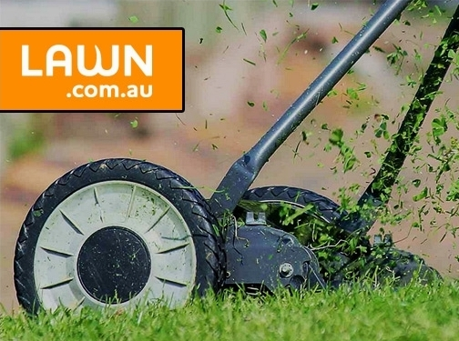 https://lawn.com.au/ website